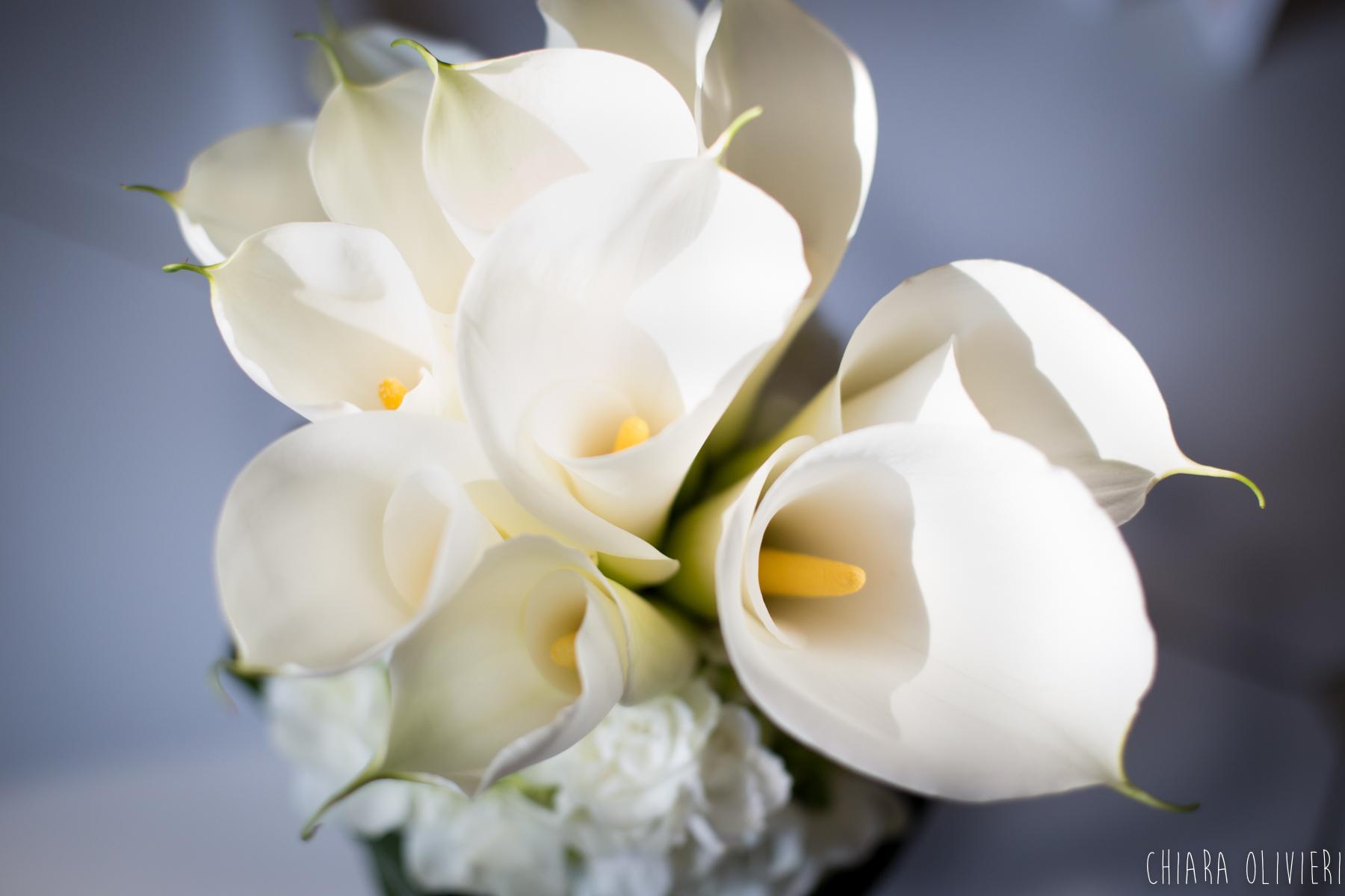 wedding-photographer-reportage-scattidamore-italy-5